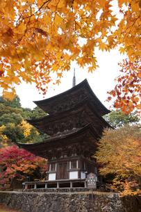 西明寺三重塔の写真素材 [FYI04673116]