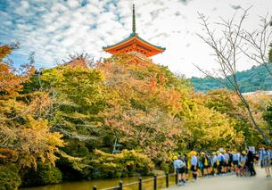 京都 清水寺の紅葉と修学旅行生の写真素材 [FYI04673163]