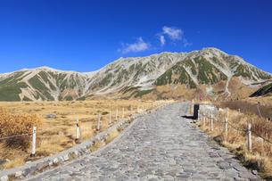 秋の室堂平から立山連峰を望むの写真素材 [FYI04673208]