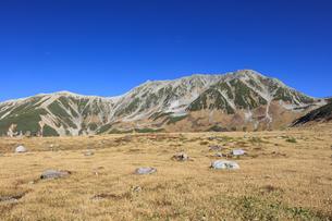 秋の室堂平から立山連峰を望むの写真素材 [FYI04673209]