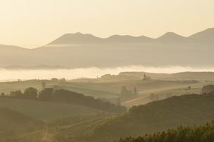 朝霧の美瑛の丘と十勝連峰の写真素材 [FYI04673214]