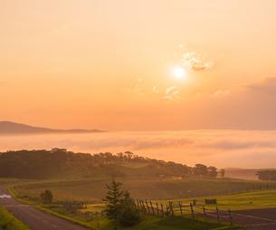 北海道 自然 風景 雲海より昇る朝日の写真素材 [FYI04673286]