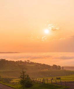北海道 自然 風景 雲海より昇る朝日の写真素材 [FYI04673287]