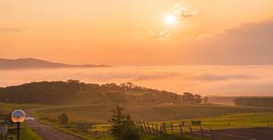 北海道 自然 風景 雲海より昇る朝日の写真素材 [FYI04673289]