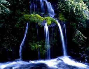 (山梨県北杜市 吐竜の滝)の写真素材 [FYI04673337]