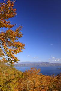 紅葉の十和田湖と八甲田山の写真素材 [FYI04673528]