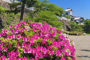 金沢城の写真素材 [FYI04673772]