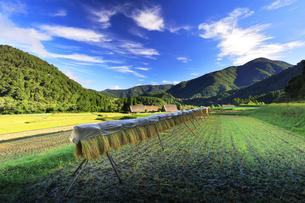世界文化遺産 秋の白川郷合掌造り集落の写真素材 [FYI04673793]
