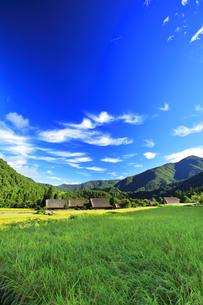 世界文化遺産 秋の白川郷合掌造り集落の写真素材 [FYI04673795]