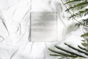 自然光と葉の影が反射した白い布とフォトアルバムの写真素材 [FYI04673895]