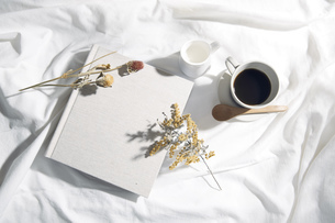 自然光と葉の影が反射した白い布とフォトアルバムの写真素材 [FYI04673896]