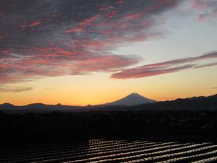 影富士の見える風景の写真素材 [FYI04674075]
