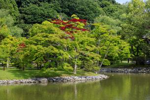 福島県 白水阿弥陀堂の写真素材 [FYI04674185]