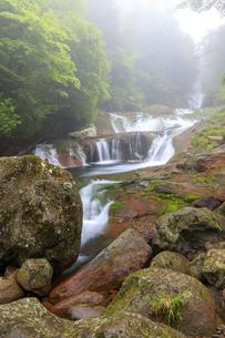 長野県 おしどり隠しの滝の写真素材 [FYI04674357]