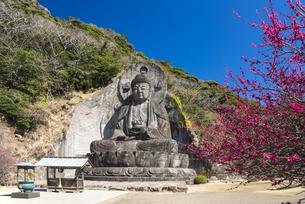 日本寺大仏の写真素材 [FYI04674382]