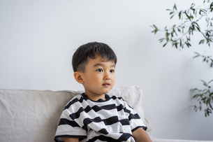 ソファに座る日本人男の子の写真素材 [FYI04674423]