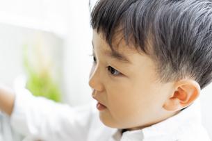 日本人男の子の横顔の写真素材 [FYI04674440]