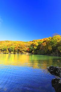 秋の滋賀高原 琵琶池と紅葉の写真素材 [FYI04674452]