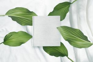 白背景の生成りの生地のアルバム冊子と植物グリーンのイラスト素材 [FYI04674478]