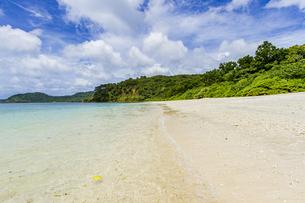 八重山グリーンとエメラルドグリーンの海に囲まれたイダの浜の写真素材 [FYI04674509]