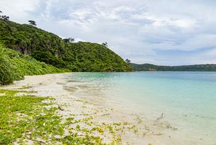八重山グリーンとエメラルドグリーンの海に囲まれたイダの浜の写真素材 [FYI04674510]