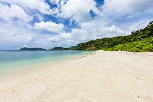 八重山グリーンとエメラルドグリーンの海に囲まれたイダの浜の写真素材 [FYI04674515]