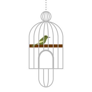 カゴに入った鳥のイラストのイラスト素材 [FYI04674598]