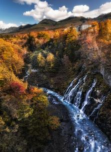 美瑛町白ひげの滝の紅葉の写真素材 [FYI04674680]