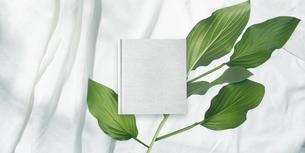 白背景の生成りの生地のアルバム冊子と植物グリーンのイラスト素材 [FYI04674927]