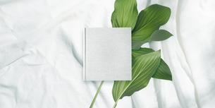 白背景の生成りの生地のアルバム冊子と植物グリーンのイラスト素材 [FYI04674936]