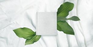 白背景の生成りの生地のアルバム冊子と植物グリーンのイラスト素材 [FYI04674940]