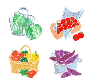 入れ物に入った野菜 いろいろのイラスト素材 [FYI04674998]