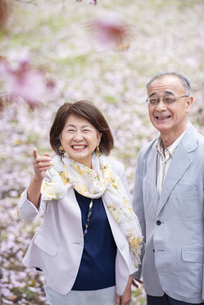 桜の前に立つシニアカップルの写真素材 [FYI04675052]