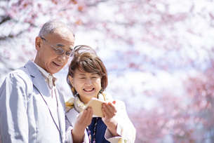 桜の前でスマホを見るシニアカップルの写真素材 [FYI04675184]