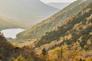金精山登山口からの紅葉の写真素材 [FYI04675478]