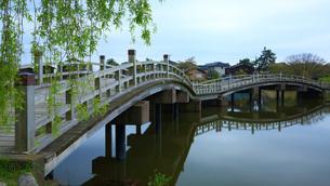 乙女が池の木の橋の写真素材 [FYI04675570]