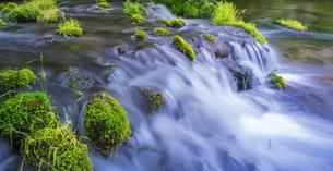 北海道 自然 風景  京極町 ふきだし公園の写真素材 [FYI04675687]
