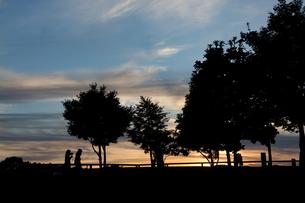 美しい夕暮れの公園の写真素材 [FYI04675832]