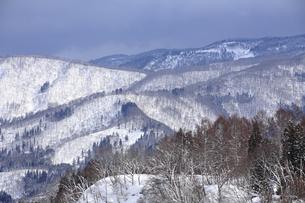 冬の鍋倉高原の写真素材 [FYI04676021]