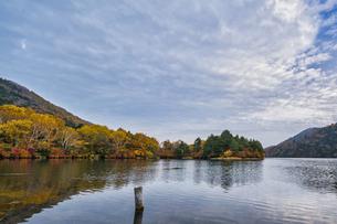 湯の湖の紅葉の写真素材 [FYI04676397]