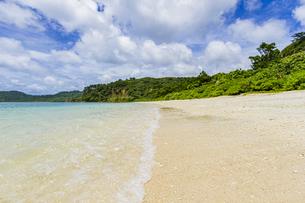 八重山グリーンとエメラルドグリーンの海に囲まれたイダの浜の写真素材 [FYI04676888]