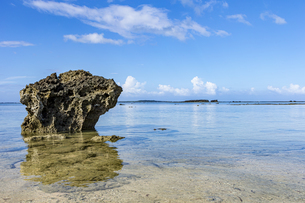 透き通った海と水平線が広がる星砂の浜の写真素材 [FYI04676911]