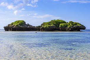 透き通った海と水平線が広がる星砂の浜の写真素材 [FYI04676914]