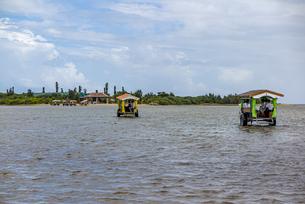 由布島へ向け海の中を渡る水牛車の写真素材 [FYI04676926]