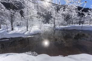 冬の上高地田代池の写真素材 [FYI04677036]