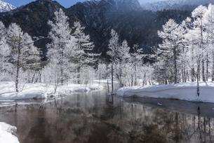 冬の上高地田代池の写真素材 [FYI04677037]