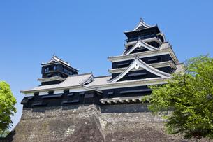 熊本城の写真素材 [FYI04677038]