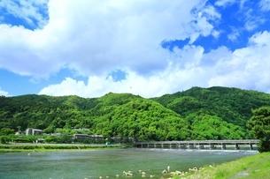 新緑の嵐山と渡月橋の写真素材 [FYI04677060]