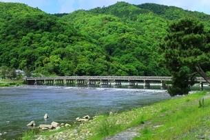 新緑の嵐山と渡月橋の写真素材 [FYI04677061]