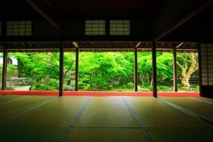 京都・圓光寺 十牛之庭の写真素材 [FYI04677075]
